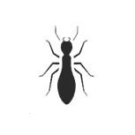 hover icon Bed Bug <br></noscript><img class=